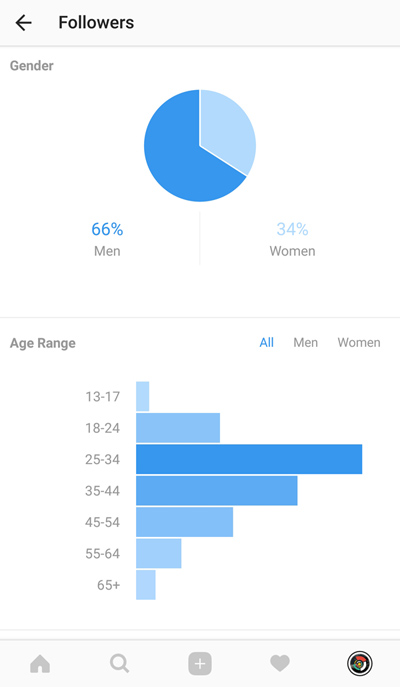 Demography of followers on Instagram - account stats