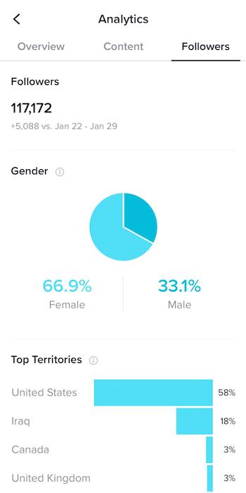 TikTok subscriber analysis